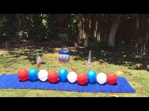 Twinkie , balloon popping dog celebrates