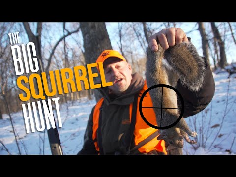 Squirrel Hunt Challenge (Pellet Guns)