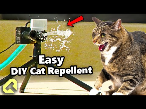 how-you-can-make-a-cat-repellent-for-under-$15-in-parts!