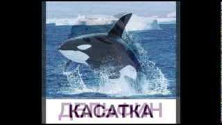 """Развивающие презентации для детей """"Морские животные"""""""