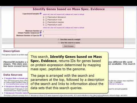 Identify Genes based on Mass Spec. Evidence