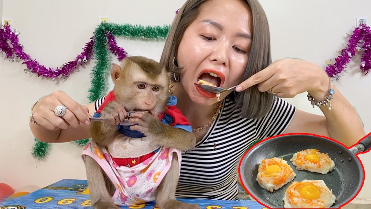 Mom Cook 3 Eggs With Sweet Potato And Carrot Eat Monkey DouDou