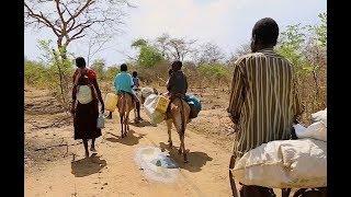 In Niger, rising temperatures mean barren fields -- but fertile ground for terrorism