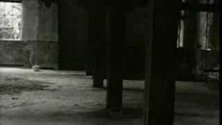 Sin Alley - Detroit 442