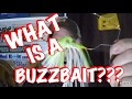 What is a BuzzBait