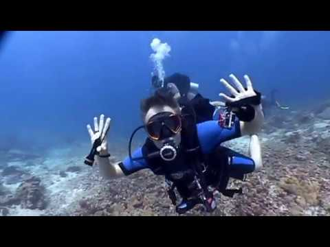 Diving Sipadan, Malaysia 2013