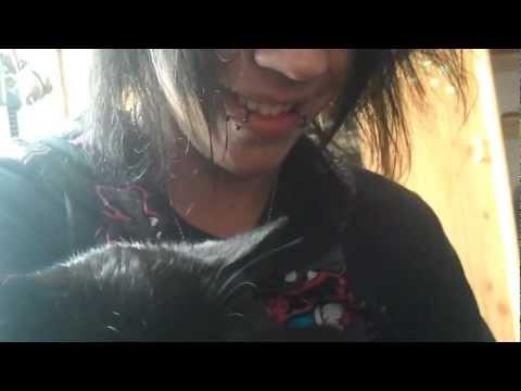 Tim Heilig rapes Cat