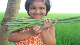FARM FRESH Drumstick Recipe Cooking By 5 Years Kid Healthy  Tasty Drumstick Curry Village Food