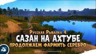 Ловим Сазана на Ахтубе. Русская Рыбалка 4[Стрим]