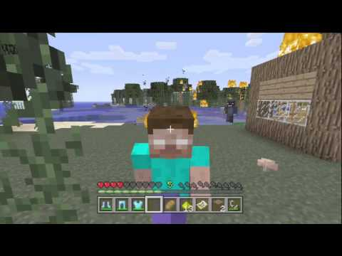 Minecraft xbox 360 Herobrine troll ( Hilarious ) Watch till the end