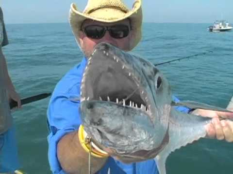 Tails From the Outdoors Show - Episode 16 - Offshore trolling and bottom fishing