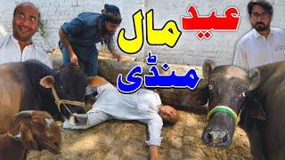 Eid Mall Mandi | Khan Vines new | Maal mandi 2021 | pashto funny video 2021