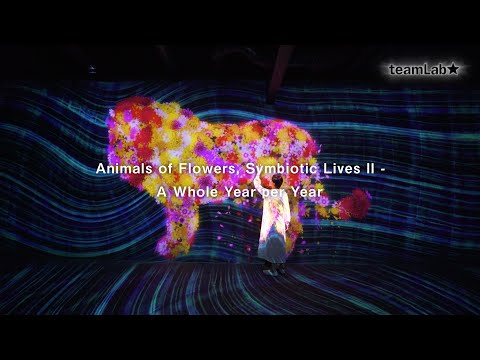Animals of Flowers, Symbiotic Lives II - A Whole Year per Year
