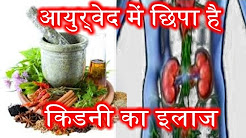 hqdefault - Ayurvedic Herbs For Kidney Health