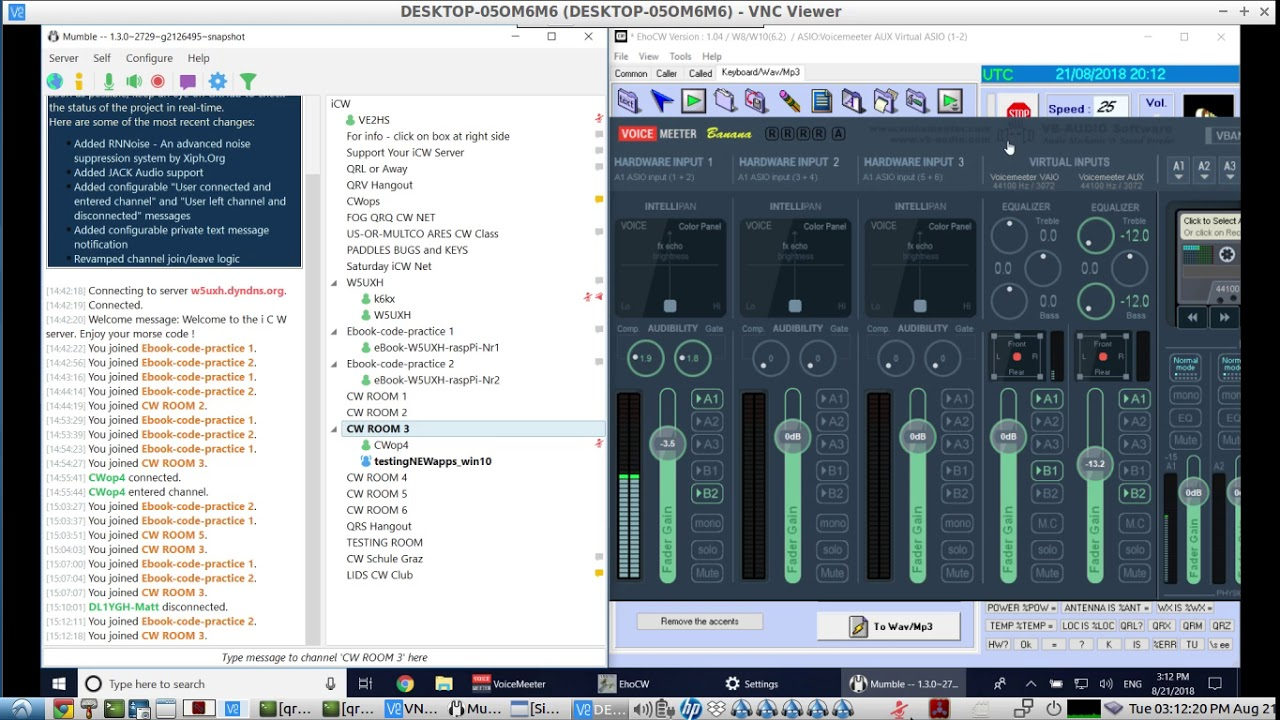 Low Latency audio using the Realtek Asio Driver on VoiceMeeter - LIVE demo  with Mumble Voice Chat