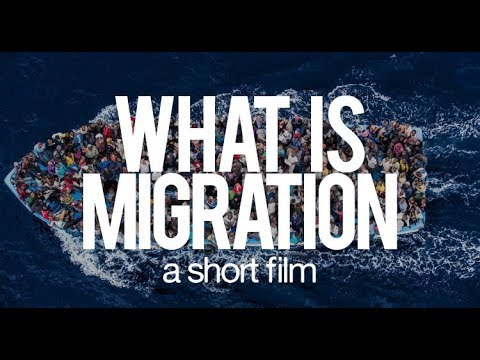 What is migration : A short film