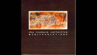 10 - (Contraction) Cones & Trills (Side D of 1996: The Iceburn Collective - Meditavolutions)