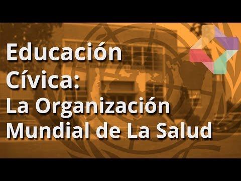 La Organización Mundial de La Salud (OMS) - Educación Cívica - Educatina