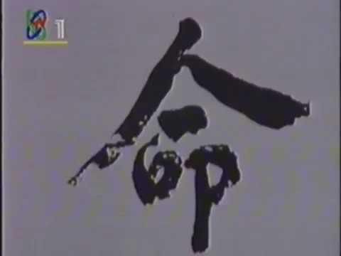 中共朱德 中國红色崛起 Red China Regime History Chinese News Archive