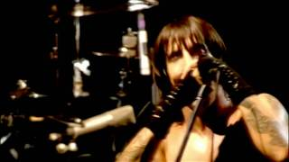 Watch Red Hot Chili Peppers Purple Stain video