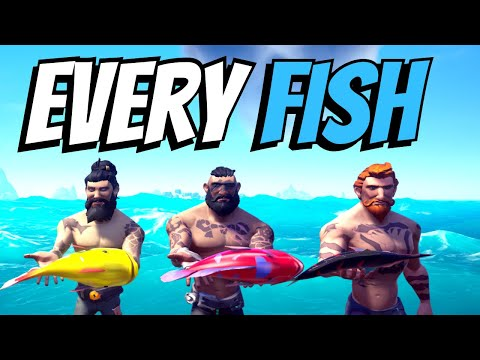 Every Fish In Sea Of Thieves (Updated Prices 2019)