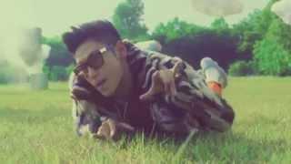 2NE1 & BIGBANG - Lollipop (Sober Remix)