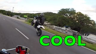 MOTORCYCLIST GETS STUNG BY HORNET