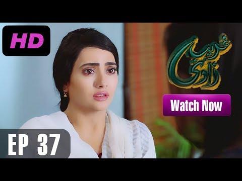 Ghareebzaadi - Episode 37 | A Plus ᴴᴰ Drama | Suzzaine Fatima, Shakeel Ahmed, Ghazala Kaife