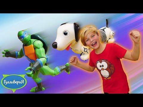 Шоу игрушек Гулливерия. Собака робот Дэкел для детей! Видео с игрушками Черепашки-ниндзя.
