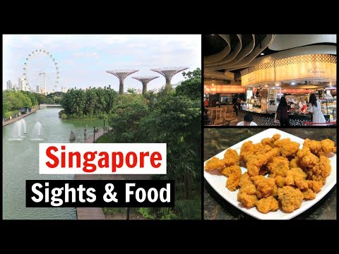 Singapore Travel Vlog - Gardens by the Bay and Food Court Tour