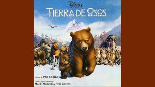 Video Tierra De Osos - Great Spirits (Tina Turner) download MP3, 3GP, MP4, WEBM, AVI, FLV September 2018