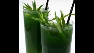 Тархун. Лечебный напиток. Укрепление сосудов, защита от инфаркта и инсульта.
