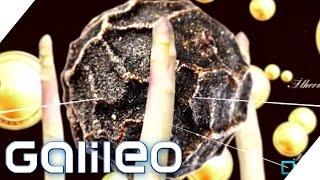 Wie wächst eigentlich ...? | Galileo | ProSieben