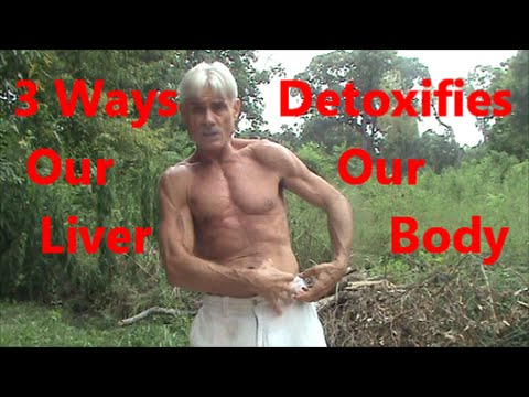 3 Ways Our Liver Detoxifies Our Body