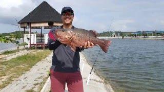 Video Trip to Barelang Fishing Pond in Batam, Dec 2015 download MP3, 3GP, MP4, WEBM, AVI, FLV Agustus 2018