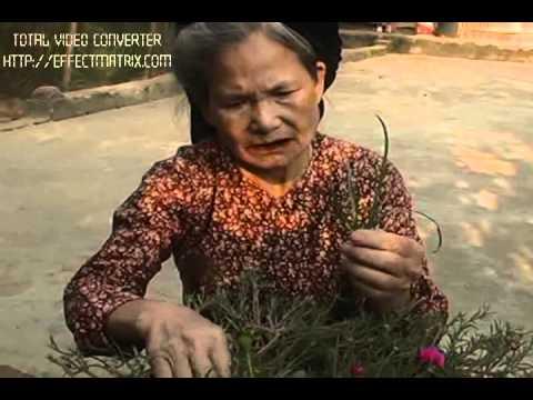 Lòng mẹ 2 Ngọc Sơn...(Hữu Cảm - Xuân Tươi - Hợp CTV)