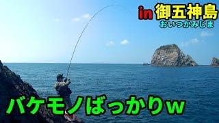 トーナメンターと厳しい御五神島でグレ釣り thumbnail