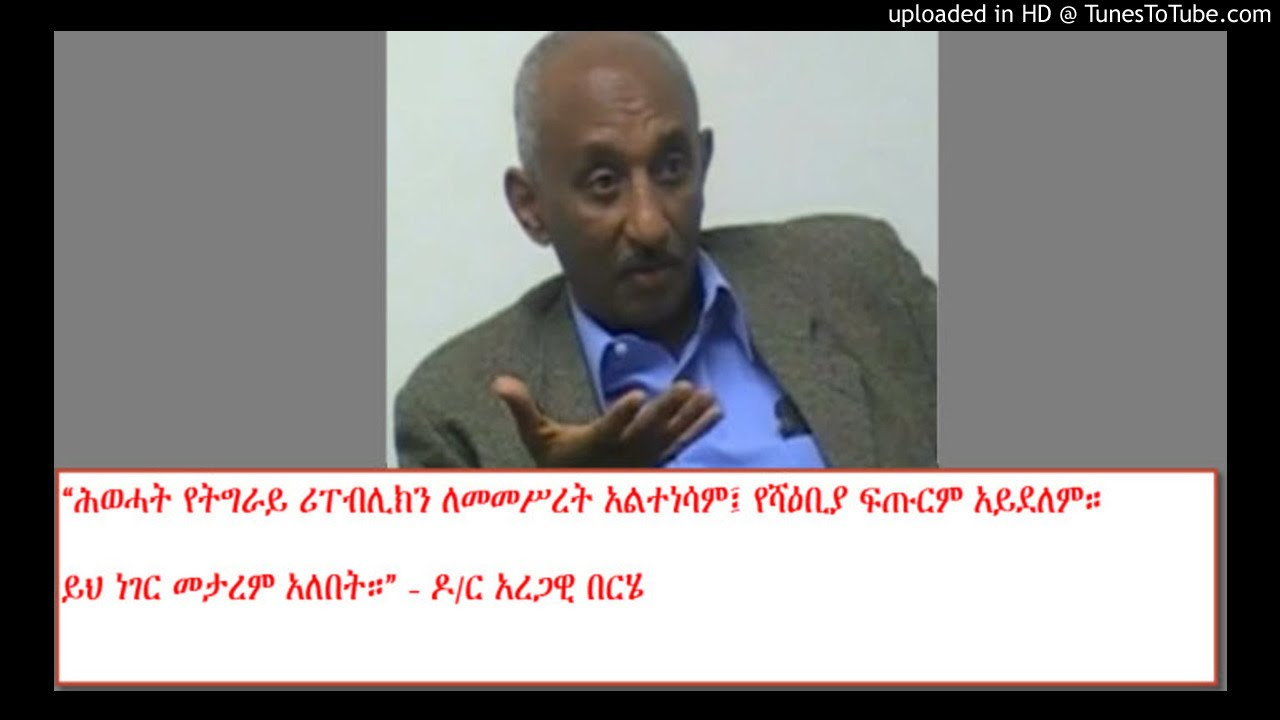 Interview with dr aregawi berhe sbs amharic
