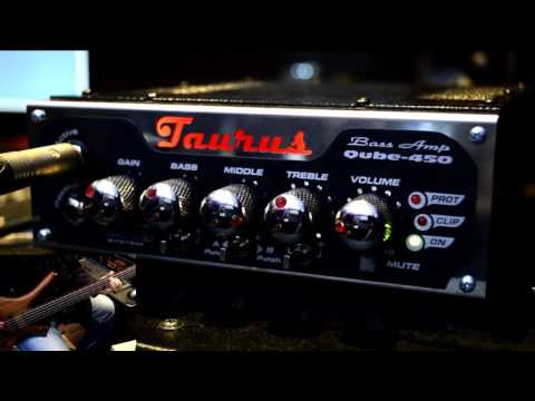 Taurus Qube-450 Bass Head Demo