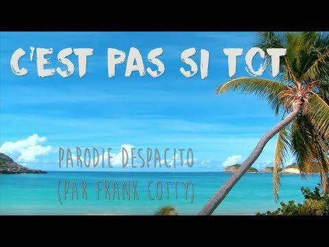 Luis Fonsi - Despacito - PARODIE Frank Cotty