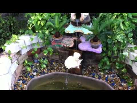 Como hacer un acuario en tu patio youtube for Como construir un lago artificial