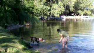 German Shorthaired Pointer, My Dog & I @ Otter Tail Lake #2