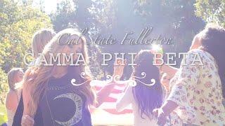 Celebrities Who Were In Gamma Phi Beta