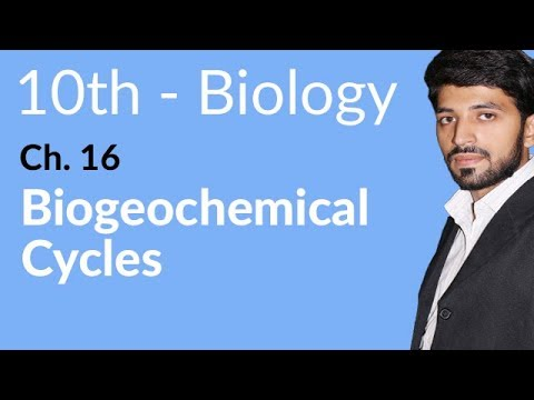 10th Class Biology book in Urdu,Biogeochemical Cycles-Biology Chapter 16 Man and his Environment