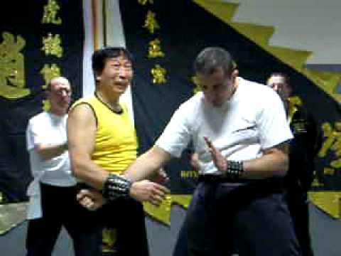 Video Of Seminar By Hung Gar Grandmaster Chiu Chi Ling Youtube