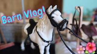 🐎NEW Schleich Barn Vlog With Sky!🐴FIRST DAY TV