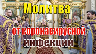 Молитва против коронавирусной инфекции за Божественной литургией.