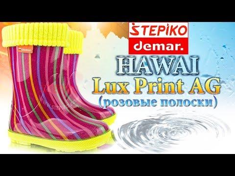 DEMAR Hawai Lux Print AG Розовые полоски.Видео обзор на резиновые сапоги Демар 0048AG от Stepiko.com
