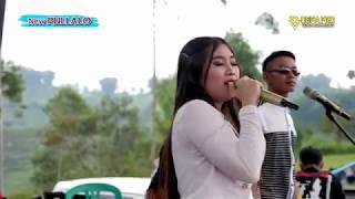 Mawar Putih - Dava Ersita New PULLALO live anniversary PCS-BARA