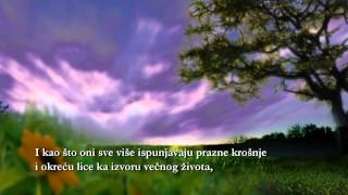Dolivanje života - Vladimir Đorđević